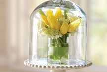 Flowers Centerpieces