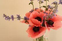I love flowers :)