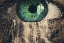 eyes/ oczy