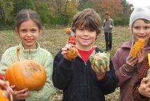 Waldorf Harvest / by Cincinnati Waldorf School