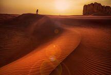 The desert!