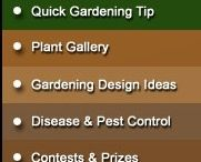 Tips and Tricks / Here are some tips and tricks that give some inside knowledge on gardening on both the small and large scale. / by The Back 40
