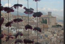 Casa con encanto LA SALAMANDRA / Casa con encanto y con 4 habitaciones con cama de matrimonio,2 baños,cocina completa,comedor,salon con vistas y chimenea,terraza y patio. En un entorno tranquilo y relajante  Con vistas al casco antiguo y la montaña y con aromas a pino y lavanda............en Moratalla,noroeste de Murcia