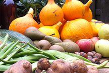 Voeding - duurzame voedselproductie / Iedere consument moet kunnen kiezen voor voldoende gezond, veilig en duurzaam eten en drinken. Daarom ziet de overheid erop toe dat fabrikanten hygiënisch en veilig levensmiddelen produceren. En dat de productie niet ten koste gaat van het milieu of dierenwelzijn http://www.rijksoverheid.nl/onderwerpen/voeding