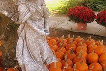 << Pumpkins * Squash >> / All kinds of squash including: butternut, eggplant, gourds, pumpkins, zucchini etc.