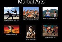Martial Arts memes