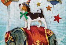 4e verjaardag Olivier, circus