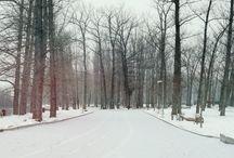 Winter story by Adrian Radu