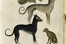 ANIMALES MEDIEVAL