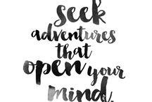 my word - 2016 - adventure