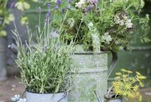 Gardens Part two / More ideas, decor and beautiful gardens to inspire...