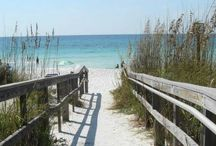 Florida Travel / Tips, advice, and attraction guides for travel to Florida. United States | Orlando | Miami | Key West | Florida Keys | Fort Lauderdale | Tampa | Jacksonville | St. Augustine