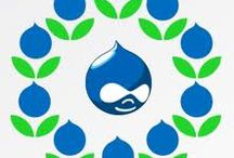 Custom Drupal Web Development Services / Sparx IT Solutions is a custom Drupal web development service provider from India. It also offers Drupal web development services with 100% satisfaction guarantee in all over the world.