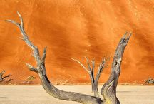 Southern Namibia / We cover the most popular photographic attractions in the south of Namibia such as the Namib-Naukluft National Park, Kolmanskop, Solitaire, Luderitz, Fish River Canyon, the Namib wild horses, Deadvlei, Sesreim Canyon and more.