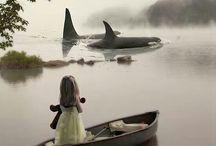 Animal LoVe / by Jillian Rummer