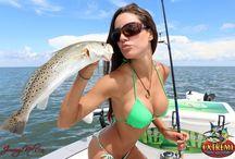 Rybaření / Vše co se týká ryb
