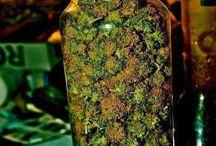 Just Some Fun Purple Bud