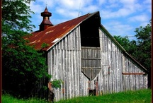 BARNS/BUILDINGS SOME OLD AND SOME NEW / I Love finding old Barns and I have found that 90% of Pinterest followers love them too!  Why is that?  We all seem to love and admire those things that were common to our past. / by Diane