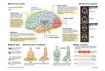 efectos positivos meditacion