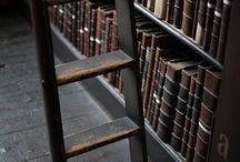 Bibliophile II: Where the words live