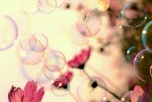 kytky a přán8