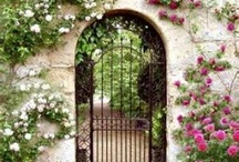 The Garden Gate / by Lorie Morrow