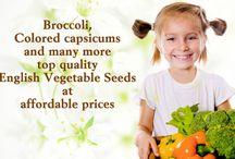 Kraft Seeds / Kraft Seeds is a complete online seeds store offering flower seeds, Vegetables seeds, Herbs seeds & Flower Bulbs for home & Kitchen garden, hanging baskets
