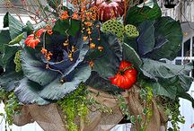 fall planters / by Kat White