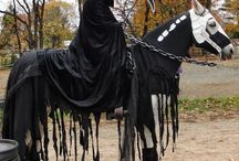 Halloween Horse / by Horseclicks