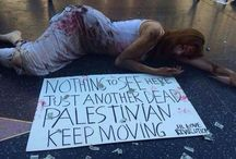 BDS Boycott Divestment and Sanctions