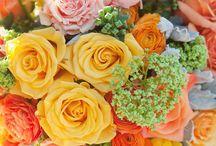 My Wedding - Flowers / by Alex Neighbors