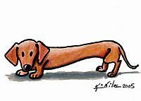 A Doxie Lover Forever / I love doxies. Always have. Always will. / by Rane Hunter