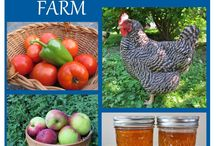 I need a Farm! / by Jennifer Stovall