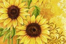 Güneş çiçekleri