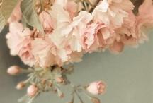 floral ♡ / flowers, nature, bouquet, flower arrangement, floral