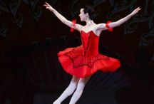 Ballet Don Quixote costume