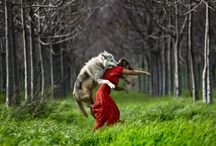 Wild Women Who Run With the Wolves