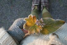 Knitterly inspiration / by Lisa Chemery
