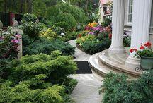 Ogród / Propozycje urządzenia ogrodu