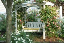Backyard & Garden  / by Brooke thiel