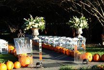 Fall Wedding Ideas  / Fall wedding ideas
