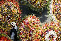 Feria de las Flores / Hotel en Medellín - BEST WESTERN