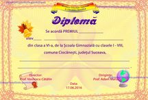 D semipersonaliz. V-VIII / Diplome scolare semipersonalizate clasele V-VIII (absolvire, merit, premiere)