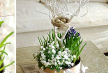 Jar dekoracia