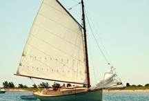 Barcos de Vela