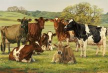 Country life / by Jennifer Hodge
