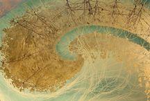 Microscopio / by Susana Munay