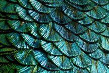 Textures / by Vero Modero - Bouquet Babii