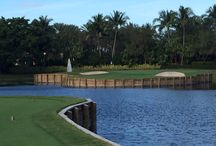 Golf Courses / Golf Courses