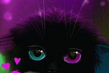Obrazki -koty i psy